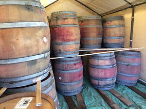 LOOK >> 90 x Food Grade Barrels in Jumbo Terra Cotta, $40 each Edmonton Edmonton Area image 5