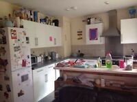 Large Sunny Double Room in Fun Houseshare