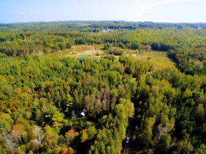 Land for Sale - Lot 12 Concession 16, Tiny Township, ON