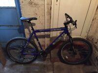 Shogun mountain bike