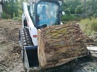 Arbourists Devlopers We buy your Logs Trees Hardwood Large Farm