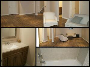 Your home improvement experts Cambridge Kitchener Area image 2