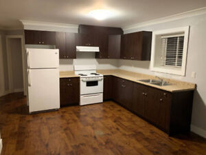 Large Bright 1 Bedroom Basement Suite Available For Rent NOW!
