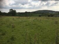 Land wanted for grazing