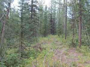 2 Acre Lot For Sale Residential Neighborhood Prince George British Columbia image 5