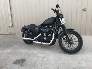 2011 HD Sportster 883, 0nly 1,915 km