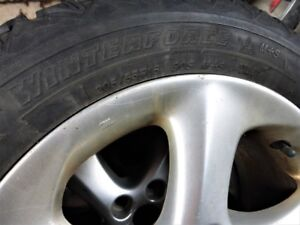 Winterforce tires/pneus 205/55/R16