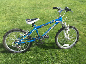 Girls Blue 6 speed Mountain Bike with front suspension.