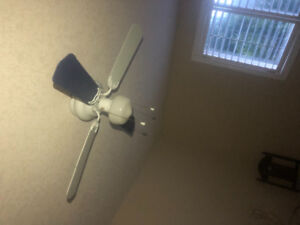 Ceiling fan. White and blue.