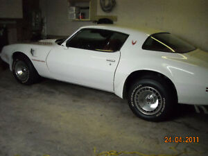 1981 Pontiac Trans Am 4.9 L 301 Turbo Charge