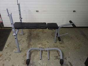 DELUXE BENCH PRESS, DUMBELLS AND WEIGHTS