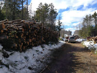 Firewood 128 Cubic Ft Guaranteed!  Payment Plans Offered!