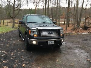 2012 Ford F-150, XTR, NEW RUBBER, LOW KM- one owner. Kingston Kingston Area image 1