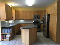 Complete Kitchen Cabinetry, Hardware, Counters and Sink for Sale