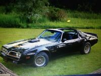 WANTED 1977 - 1980 TRANS AM