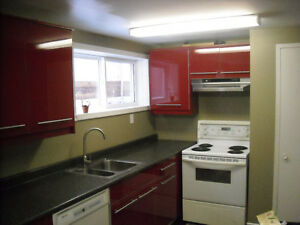 120 AVE 94 ST, 2 BEDROOM updated basement(separate laundry)