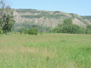 Beautiful Ranch on the Peace River across form Fort St. John