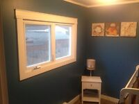 Experienced Painter Available!