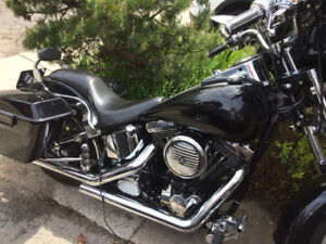 Harley Custom Softail For Sale