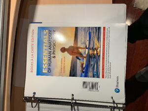 Humber college business first year books