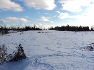 BEAUTIFUL ACREAGE!!!!!!!ONLY $65,000.00