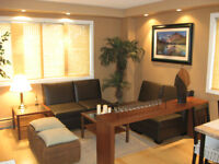Fully furnished executive 1 bedroom Condo in Downtown.