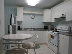 Bonnie Doon (safe&central) furnished lower studio Mature, ns,np