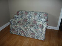Love Seat/Hide a Bed