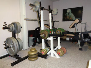 Northern Light Squat Rack and weight lifting bench