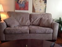Couch with pullout bed