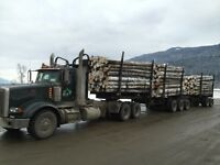 Looking for experienced log truck driver
