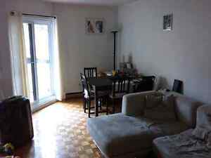 Spacious downtown one bedroom apt close to McGill and Concordia