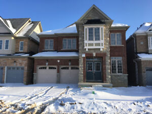 Brand New Never Lived 4 bedroom House - Vacant - Brampton