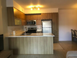 Modern 5 1/2 condo for rent in the heart of Montreal Downtown!