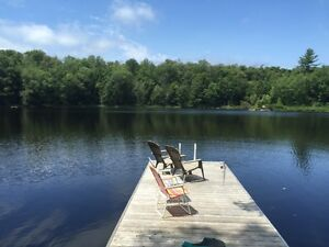 Muskoka: Rustic cabin and 5 acres, 800 ft lake frontage