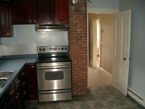 Quiet renovated flat - 5 mins to Dal and hospitals