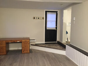 Downtown Apartment - All Inclusive St. John's Newfoundland image 3