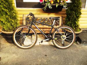 Bianchi Alaska Mountain Bike