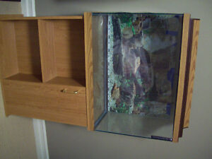 38 GALLON TALL AQUARIUM, STAND, CANOPY, AND AC FILTER