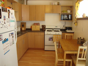 GREAT Location! BRIGHT 3 Bdrm BASEMENT - Utilities Included!