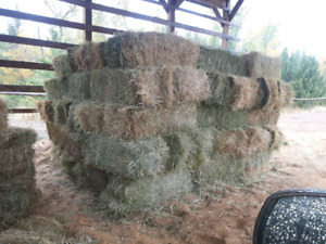 3 types of hay for sale
