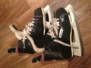 10D skates