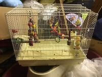 Budgie cage for sale £15
