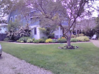 Offering Landscaping & Painting Services!