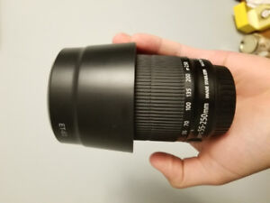 Canon 55-250mm f/4-5.6 IS STM Telephoto Lens with Lens Hood