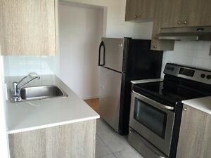 Gorgeous, newly renovated 4 1/2 apartment available in Rosemont!