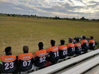 Join Eagles Cricket Club - Ontario's Largest Growing Club