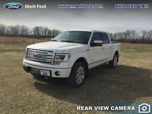 2013 Ford F-150 Platinum  - Sunroof -  Navigation -  Leather Sea