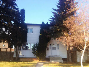 Newly Renovated 3 Bedrooms Basement near Schools