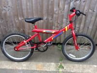 Ammaco Grinder Childs mountain bike serviced ready to ride